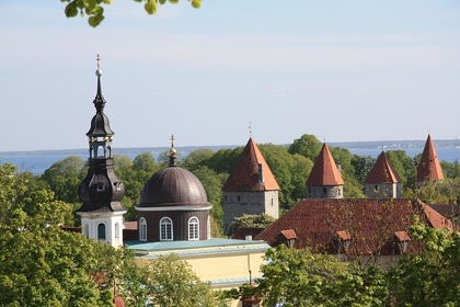 Эстония как пример потерь от приграничной торговли для Минздрава РФ