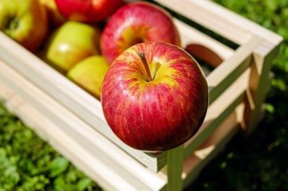 Россия ограничила ввоз белорусских яблок с 14 февраля