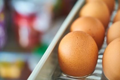 Россия открыла свой рынок для живой птицы и яиц из США и Канады