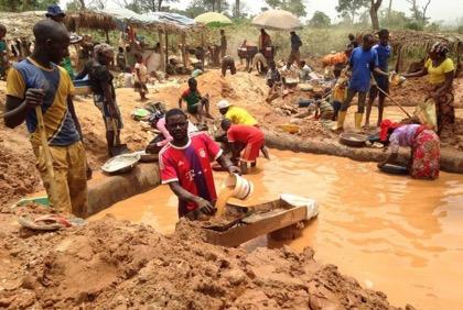 Китайские золотодобытчики в Камеруне увязли в коррупции