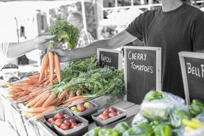 Минсельхоз смягчил предложение Яровой о запрете возврата продуктов питания