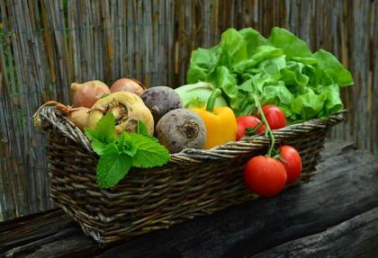 Доля отечественных овощей вырастет до 80% на рынке РФ к 2025 году