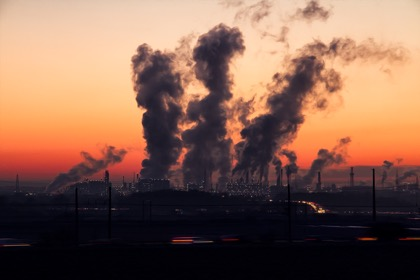 Приморский край возглавил рейтинг регионов с самой грязной землёй