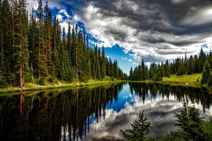 Минприроды сократило расходы на нацпроект по экологии на 17%