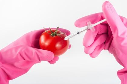 При правительстве РФ появится совет по развитию биотехнологий.