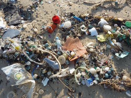 Крупнейшие мировые бренды объединяются для борьбы с пластиковыми отходами
