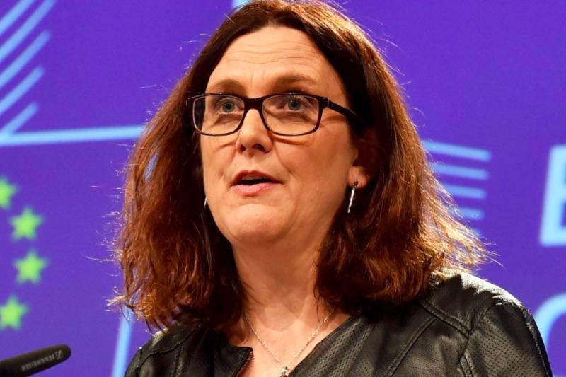 Мальмстрем: мы можем стать последней Еврокомиссией с верой в Европу
