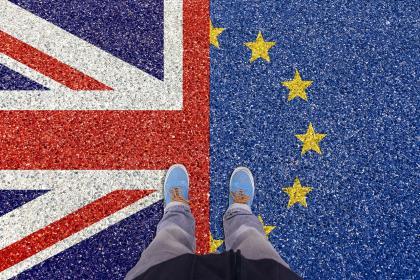 "Туск предложил ""гибкое"" продление срока Brexit"