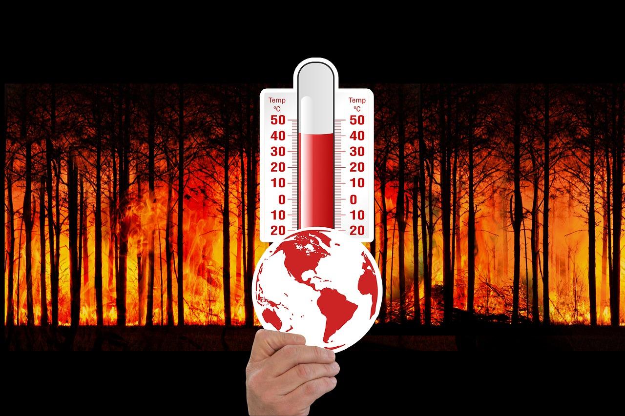 Темп потепления климата в России выше среднемирового