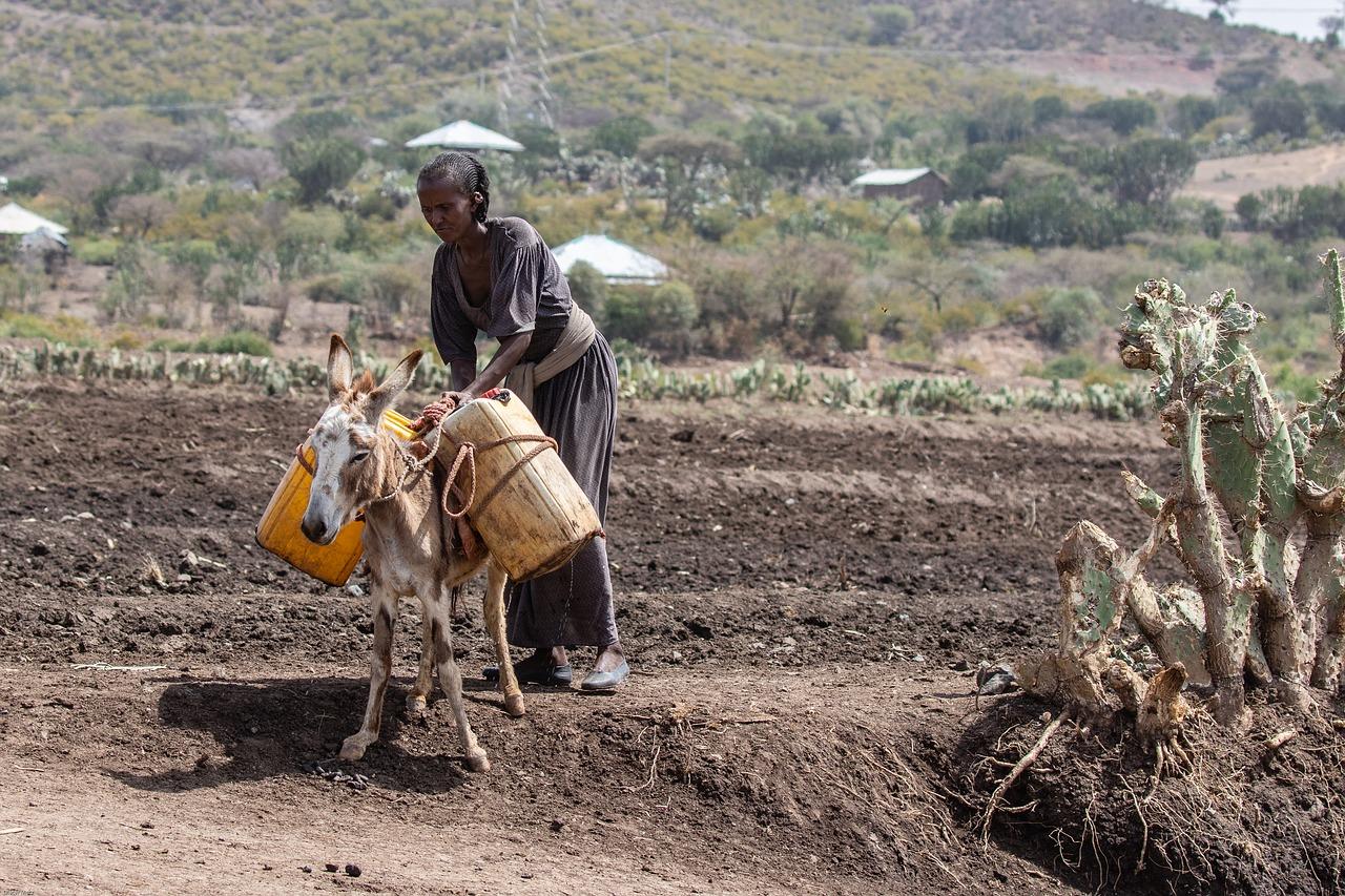 ООН встревожена оттоком капитала из развивающихся стран