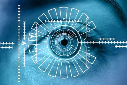 Пятничные заметки о замещении труда капиталом на примере биометрии