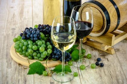 Мировое производство вина стало максимальным за 15 лет