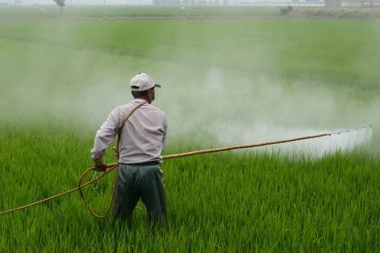 Monsanto выплатит более $2 млрд заболевшим раком пользователям Roundup