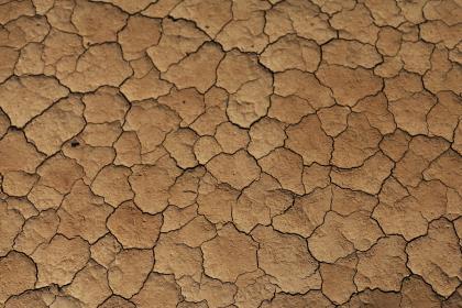 ВМО подтвердила последние температурные рекорды на планете