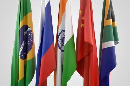 Страны БРИКС обсудили олигополию на глобальном рынке семян