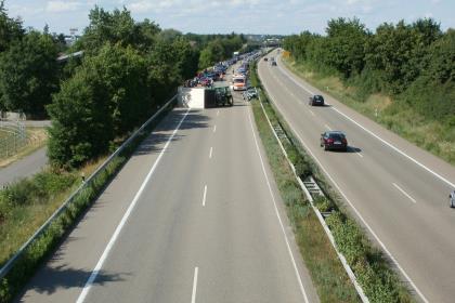 В правительстве РФ предложили поручить Бузовой пропаганду безопасности на дорогах