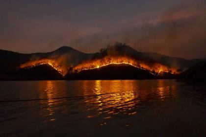 Краткая история лесных пожаров в Австралии